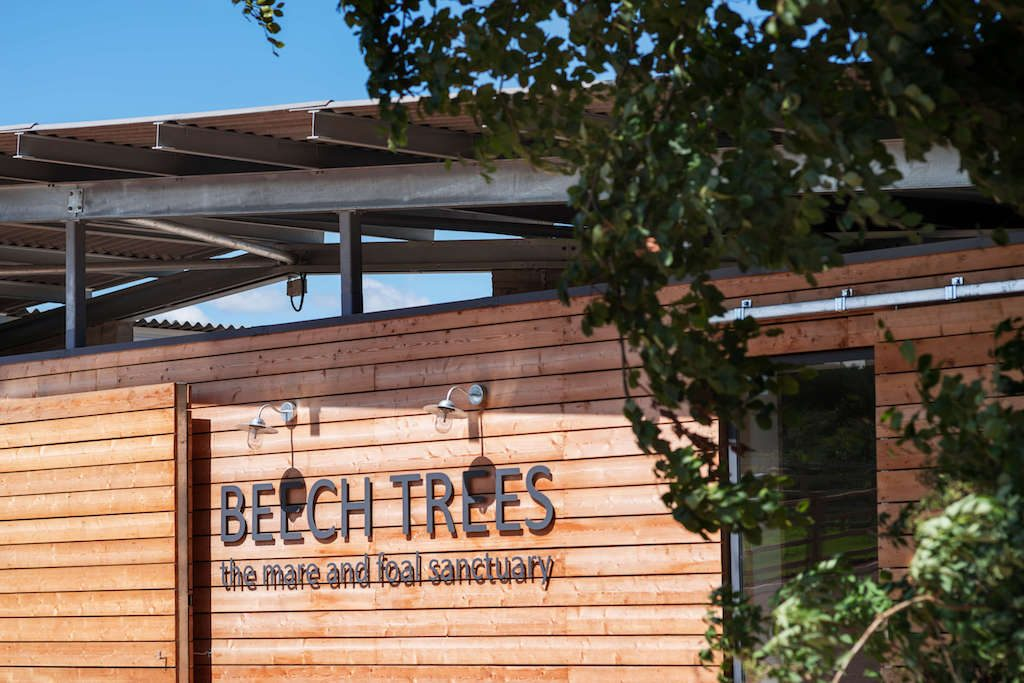 Larch cladding with metal lettering